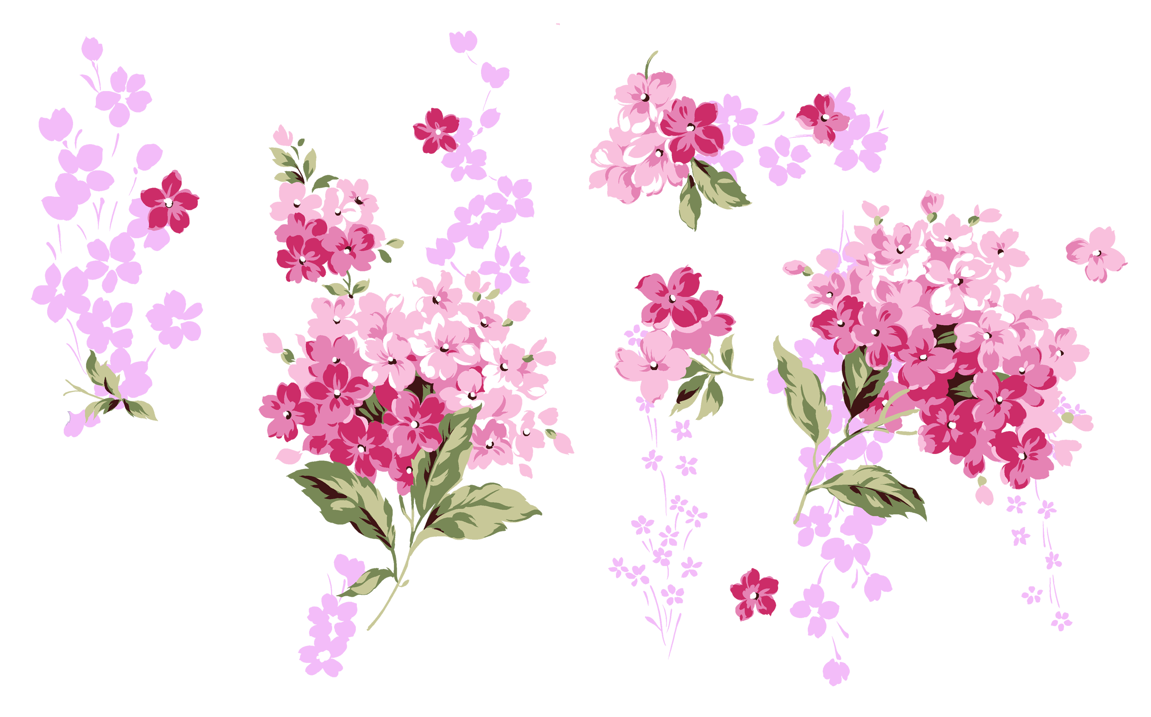ᐈ Бабочка  векторные изображения рисунок бабочка